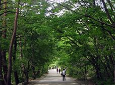 설악산 소공원